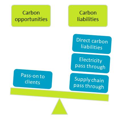 carbon management balance